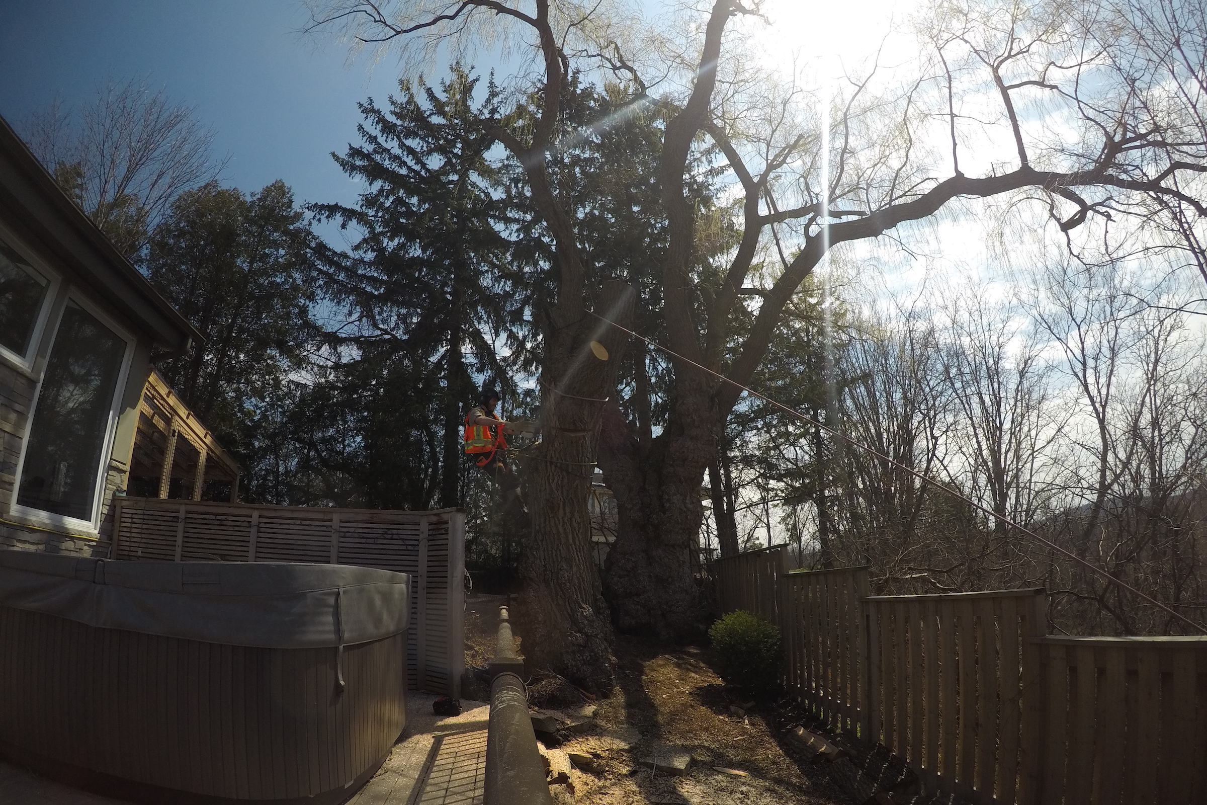 Safety on the Work Site with Ironwood Arboricultural